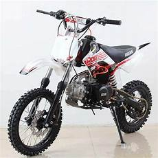 pit bike roan rex 125cc cross mini motos minipitbikes