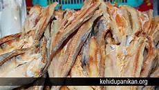 Gambar Ikan Asin Sepat Gambar Ikan Hd