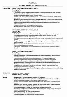 assistant marketing manager resume sles velvet
