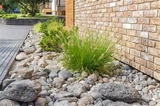 gräser im steingarten bepflanzung mit ziergr 228 sern 187 eine auswahl der sch 246 nsten