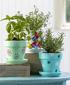 vasi colorati per piante vasi terracotta tante idee originali per realizzare