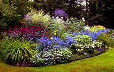 giardini in fiore foto giardino frammenti d onda