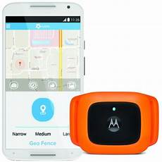 top 5 gt meilleurs colliers gps chat traceurs gps chat