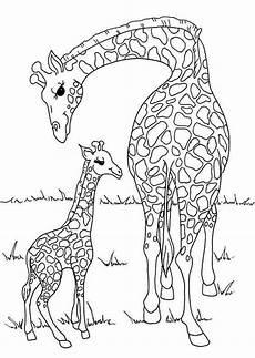 ausmalbilder giraffe elefant tiffanylovesbooks