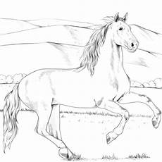 Ausmalbilder Pferde Supercoloring Pin By Malvorlagen On Pferde Malvorlagen