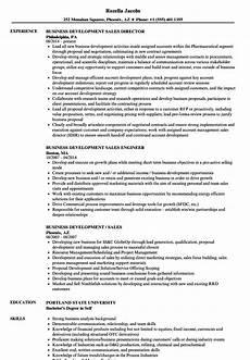 business development sales resume sles velvet