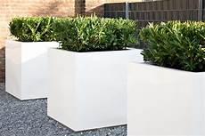Bac En Resine Et Fibre Busy Exterieur Cube Blanc Du Site