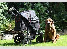 Hundebuggy TOGfit Pet Roadster im Test hundemagazin.net