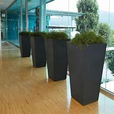 vasi per piante da esterno prezzi vaso alto per piante eros nicoli