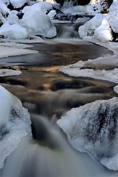 winterzeit forum f 252 r naturfotografen