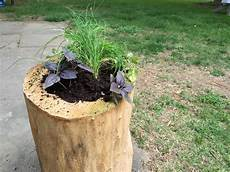 How To Turn A Dried Out Log Into A Garden Planter How