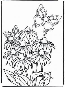 Malvorlagen Blumen Und Schmetterling Malvorlagen Schmetterlinge Malvorlagen Blumen