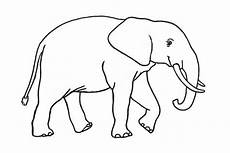 20 Sketsa Gambar Hewan Gajah Yang Mudah Di Warnai Untuk