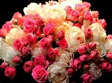 Bouquet Fleurs Et Blanc Fonds D 233 Cran