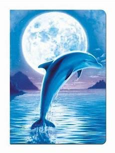 Unterwasser Tiere Malvorlagen Xing Pin Susanne Ritsch Auf Delfine Mit Bildern