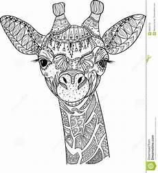 zentangle giraffe stock vector illustration of design
