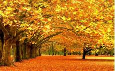 Fall Desktop Backgrounds For