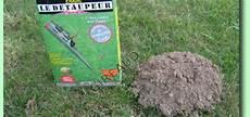 comment se debarasser des taupes se debarrasser des taupes dans mon jardin taupier sur la