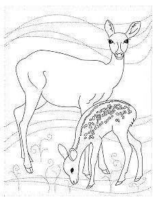 wood animals coloring pages 17194 s free coloring pages dear to me deer coloring pages with images deer coloring
