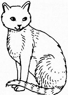 Katze Malvorlagen Gratis Free Printable Cat Coloring Pages For