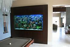 in wall 600 gallon with faux reef aquarium maintenance