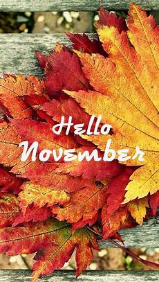 november iphone wallpaper hello november thanksgiving decorating