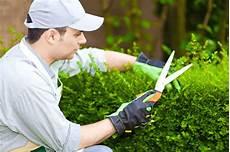 Gartenpflege G 228 Rtner Preise Tipps Im 220 Berblick