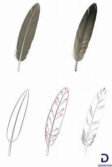 plume dessin facile 57543 comment dessiner une plume comment dessiner des plumes comment dessiner et dessin