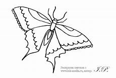 раскраски бабочки раскраски бабочки скачать картинки