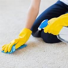 Teppich Reinigen Hausmittel Und Tipps Teppich Reinigen