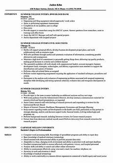 summer college intern resume sles velvet