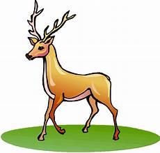 Clipart Of Deer
