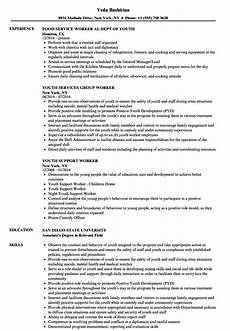 resume template for youth worker child and youth worker description for resume mt