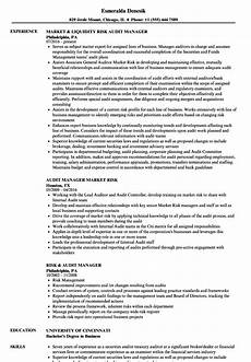 risk audit manager resume sles velvet