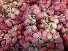 Pasar Buah Segar Anggur Merah