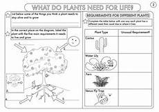 topic plants worksheets 13640 year 3 science plants topic worksheets teaching resources