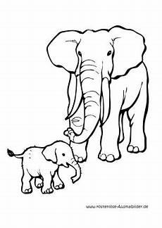 ausmalbild elefantenbaby tiere zum ausmalen