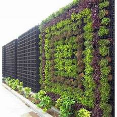 plastic decorative vertical garden made with small plants