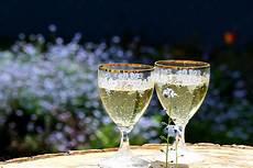 disegni di bicchieri immagini bere bolla alcol bicchiere di