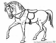 viele tolle pferde ausmalbilder mit realistischen vorlagen