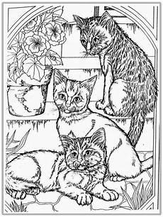 ausmalbilder f 252 r erwachsene katzen zum ausdrucken