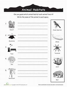 animal science worksheets for high school 14040 animal habitats for with images animal habitats habitats grade science