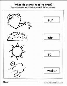 growing plants worksheets kindergarten 13575 what do plants need to grow activity worksheet for children with images plants kindergarten