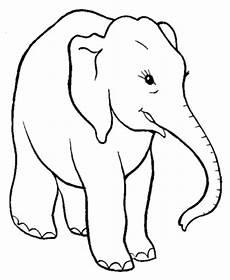 Malvorlage Elefant Kostenlos Ausmalbilder Zum Drucken Malvorlage Elefant Kostenlos 3