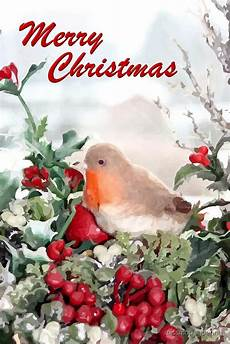 quot merry christmas robin quot by missmoneypenny redbubble