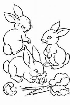 Ausmalbilder Hase Ausmalbilder Hase 12 Ausmalbilder Tiere