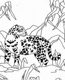 Tier Malvorlagen Instagram Ausmalbild Jaguar Tier Jaguar Tier Ausmalen Ausmalbilder