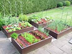 jardin carré potager la rotation optimise la nutrition des plantes gardening