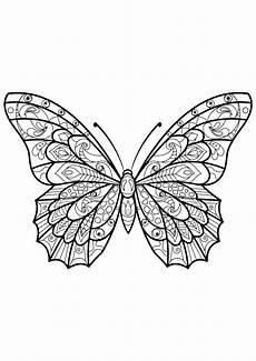 insekten 2340 schmetterlinge und insekten malbuch fur