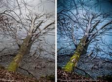 winterfotografie stefan somogyi photography